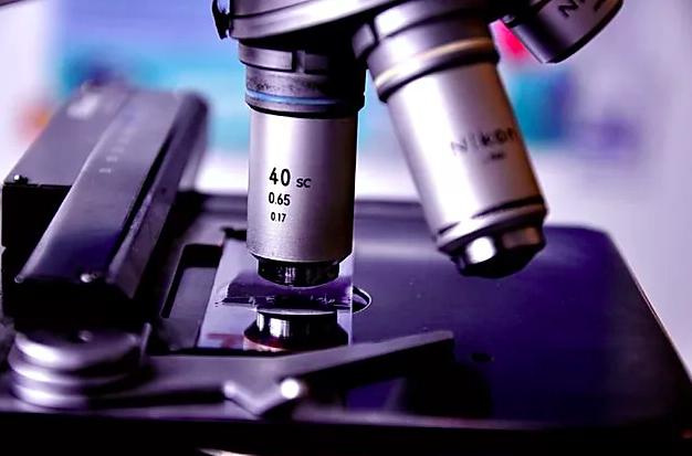 O que é Patologia Clínica Veterinária?